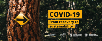 COVID-19 - From Recovery to Sustainability
